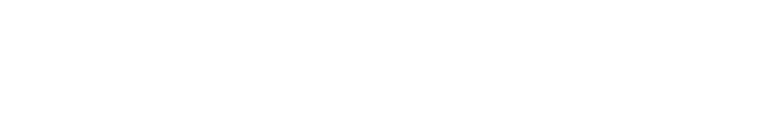Lost and Found Software Logo